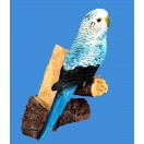 21cm Budgerigar Bird Bottle Holder