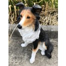 50cm Sitting Collie Dog