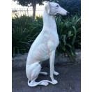 88cm Sitting Greyhound Dog