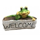 25cm Frog with Welcome Log