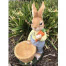 62cm Rabbit with Planter