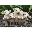 31cm Five Sheep with Welcome
