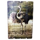 60cm Emu Wooden Wall Decor